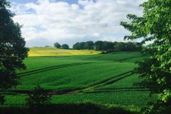 panorama-campagna